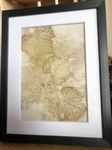 eco print on paper grape leaves