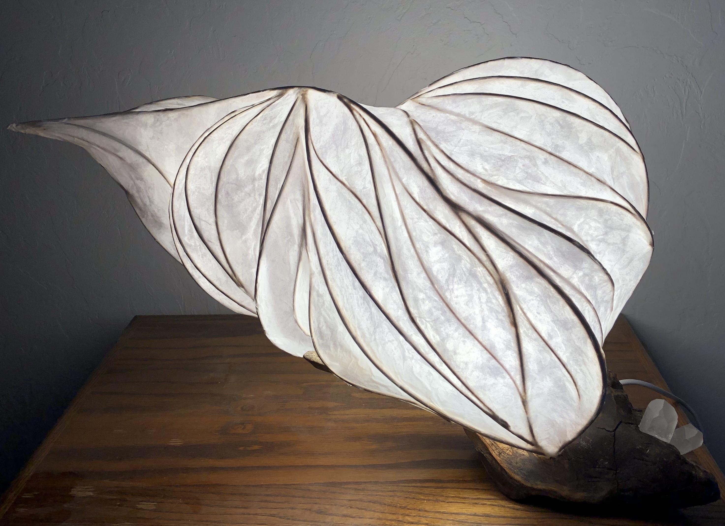 light sculpture driftwood and paper
